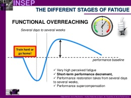 optimising-the-training-load-during-the-pretaper-phase-10-638